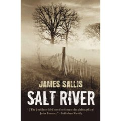 Salt River ny James Sallis